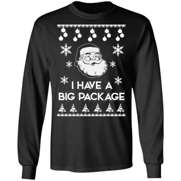 Santa I have a big package Christmas sweater 5