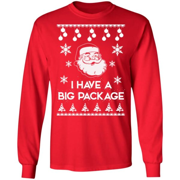 Santa I have a big package Christmas sweater 6