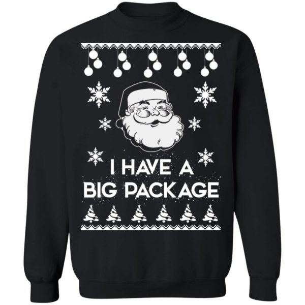 Santa I have a big package Christmas sweater 9