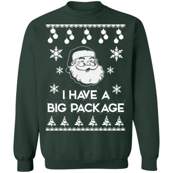 Santa I have a big package Christmas sweater 12