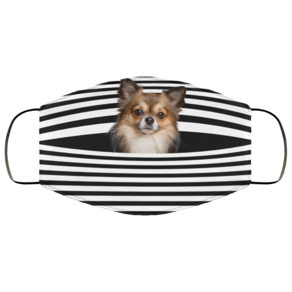 Chihuahua Stripes face mask