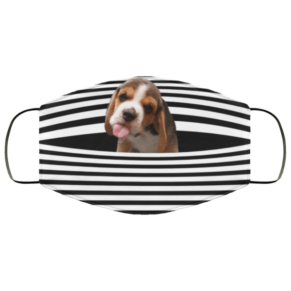 Beagle Stripes face mask