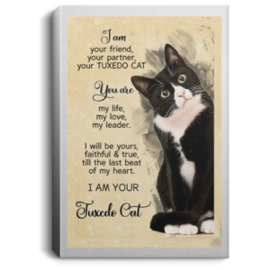 I am your friend your partner your TUXEDO CAT poster, canvas
