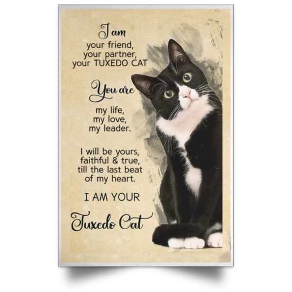 I am your friend your partner your TUXEDO CAT poster, canvas 3