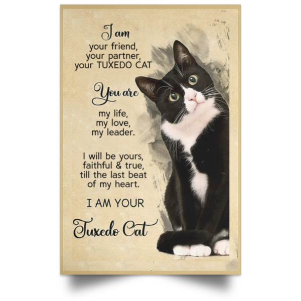 I am your friend your partner your TUXEDO CAT poster, canvas 4